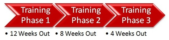 training phases 1-3